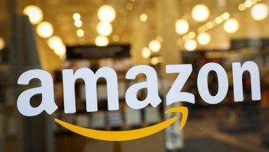 Karnataka icon on Amazon goods spark row