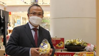 Vietnamese Goods Week in Japan finished on June 27 with Vietnamese bananas discovering a traction in this picky market