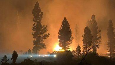 Size of Oregon wildfire underscores vastness of the US West