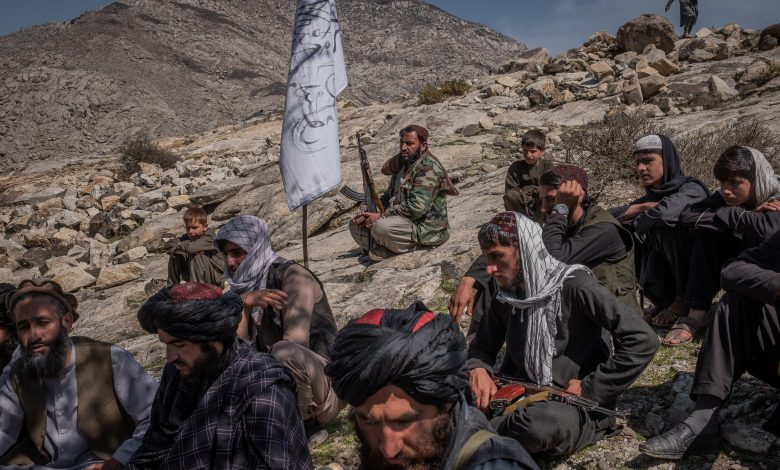 Minister's offer to the Taliban - rule together