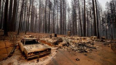 Power cut to 51,000 people in California to prevent more wildfires