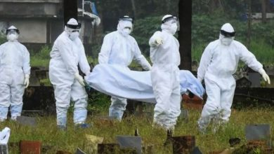 A virus strikes India again after 20 years with no recorded cases; the scientific community on alert.